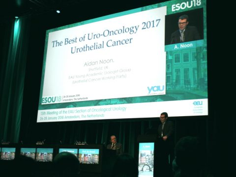 Recap of most innovative uro-oncology research in 2017